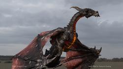 Dragon Beauty Pass