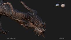 IDEA   Dragon