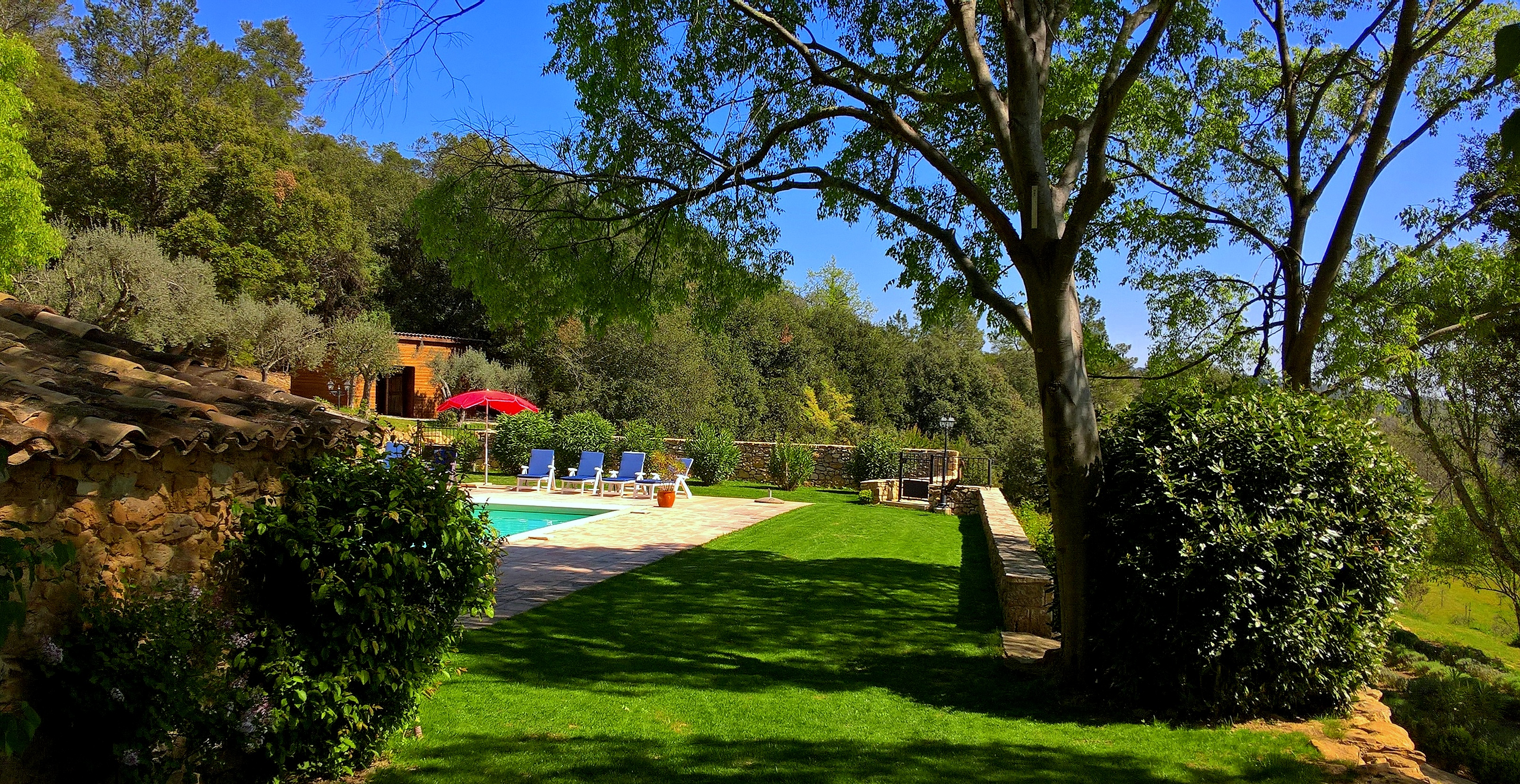 Pool with lush lawns