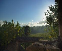 Blick von Terrasse auf Weinberge