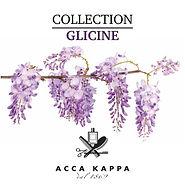 ACCA KAPPA (Glicine).jpg