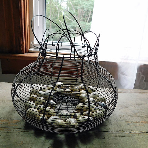 Vintage Egg Basket c1920 with Lots of Quail Eggs