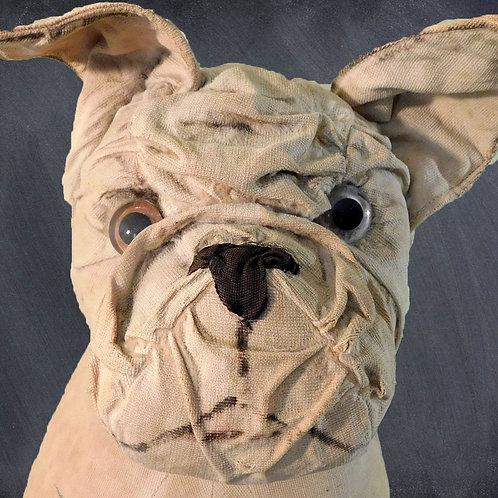 SALE PENDING * Butch the Bulldog c1898