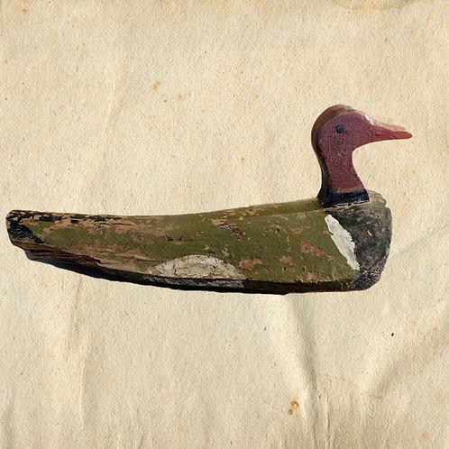 The Duck, Canvasback Decoy, American Folk Art