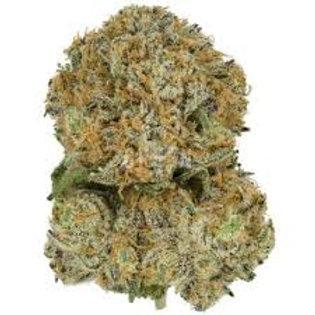 Flashback marijuana strain