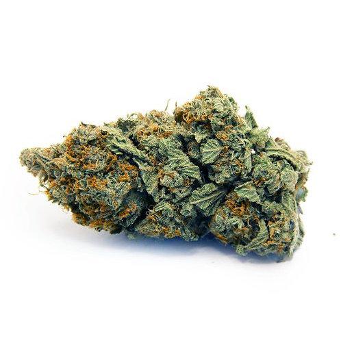 El Cid marijuana strain