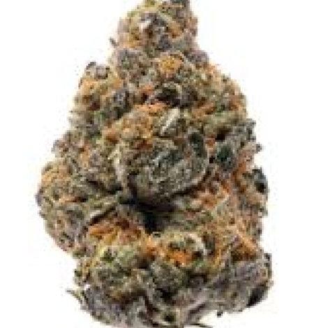 MercuryOGmarijuana strain