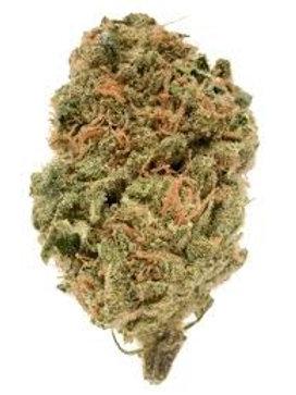 Warwick #1 weed strain