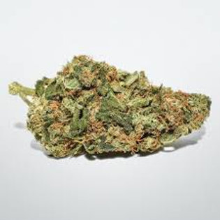 Widow Haze cannabis