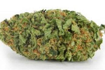 HALOOGmarijuana strain