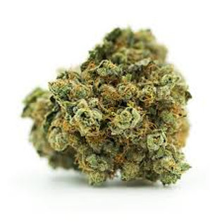 Punky Lion marijuana strain
