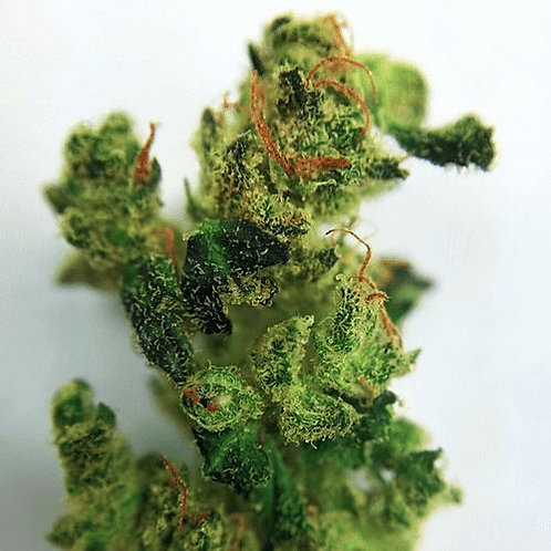Bio Wreck marijuana