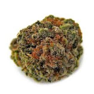Silverback Gorilla marijuana