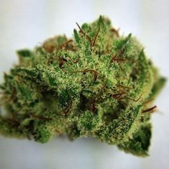 Fuma Con Dios marijuana strain