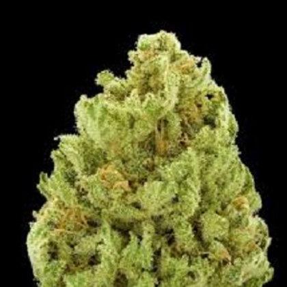 Green Ribbon Marijuana