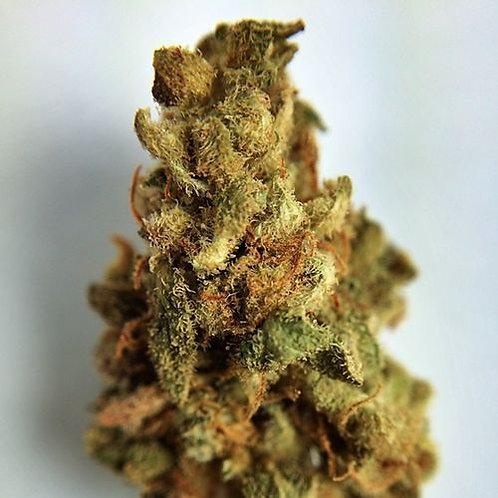 ParisOGmarijuana strain