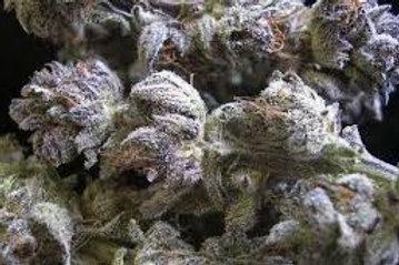 Vaniluna marijuana strain