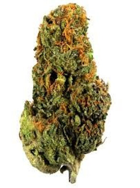 Wild Cherry marijuana