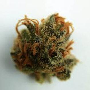 Lions Gate marijuana strain