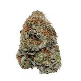 Bay 11 marijuana strain