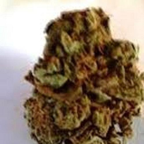 Lemon skunk weed