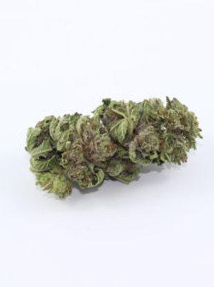 Pre 98Bubba Kushmarijuana strain