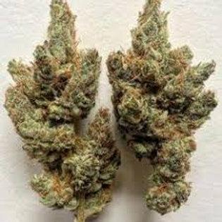 Leilani Chow marijuana strain