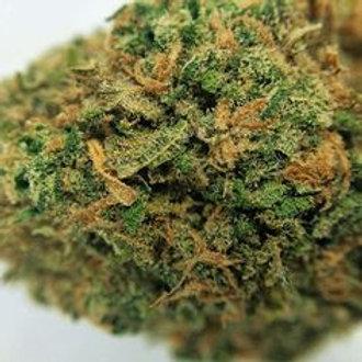 BlueOGmarijuana strain