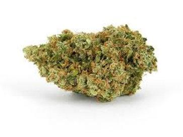 Lashkar Gah marijuanastrain