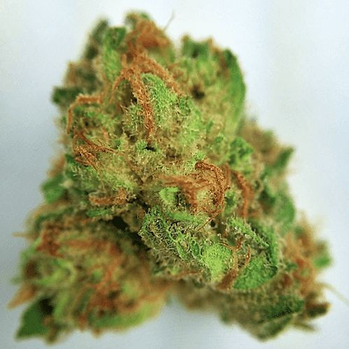 DakiniKushmarijuana strain