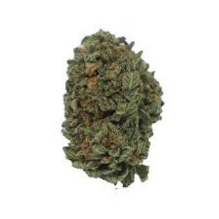 GravityOGmarijuana strain