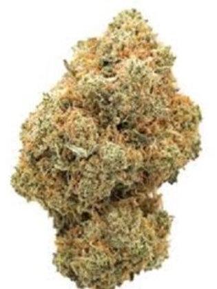 Blue Fire Marijuana strain