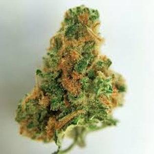 Zamaldelica cannabis strain
