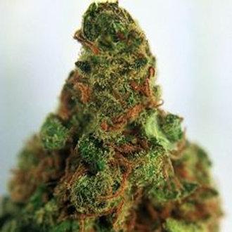 Bio-Jesus weedstrain