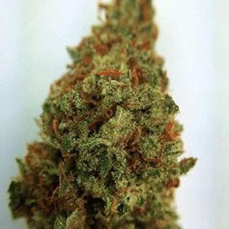 TokyoOG marijuanastrain