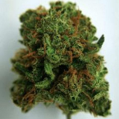 OG Ringo marijuana strain