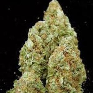 Sweet Jane weedstrain