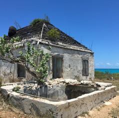 Loyalist Plantation House