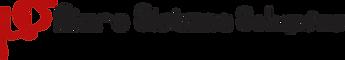 logo ms horizontal.png