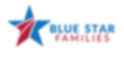 BSF-Logo-2018-01-2.png