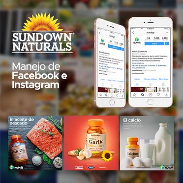Manejo de Facebook e Instagram para Sundown Naturals Guatemala