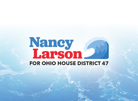 Letter to the Editor: Vote Larson for State House