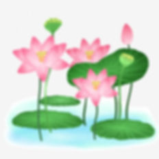 pngtree-small-fresh-colorful-lotus-leaf-