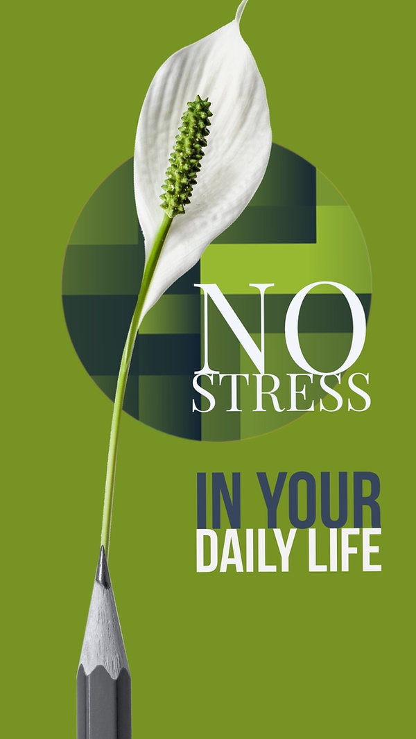 NO STRESS IN DAILY LIFE.jpg