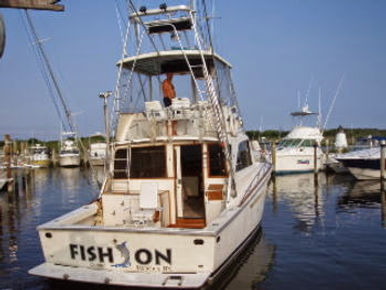 Fish On Fishing- Moriches Bay Party Boat