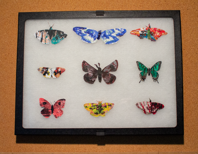Leftover Butterflies-2585.png