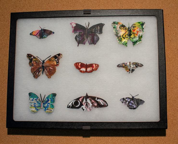 Leftover Butterflies-2574.png