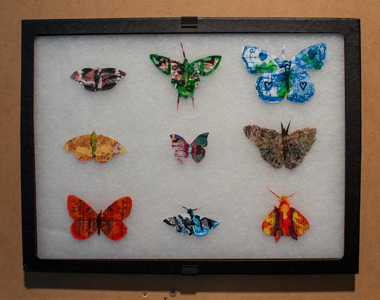 Leftover Butterflies-2575.png