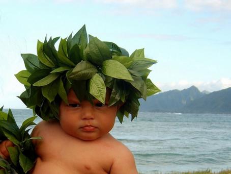 Οι Κουμπαροσυγκούμπαροι: Η γέννηση του Χουανίνιο vol3