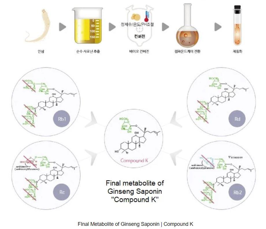 Compound K Ginsenosides